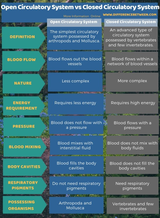 Difference Between Open Circulatory System and Closed Circulatory System in Tabular Form