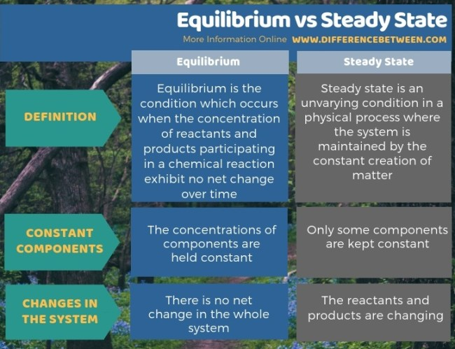 Difference Between Equilibrium and Steady State - Tabular Form