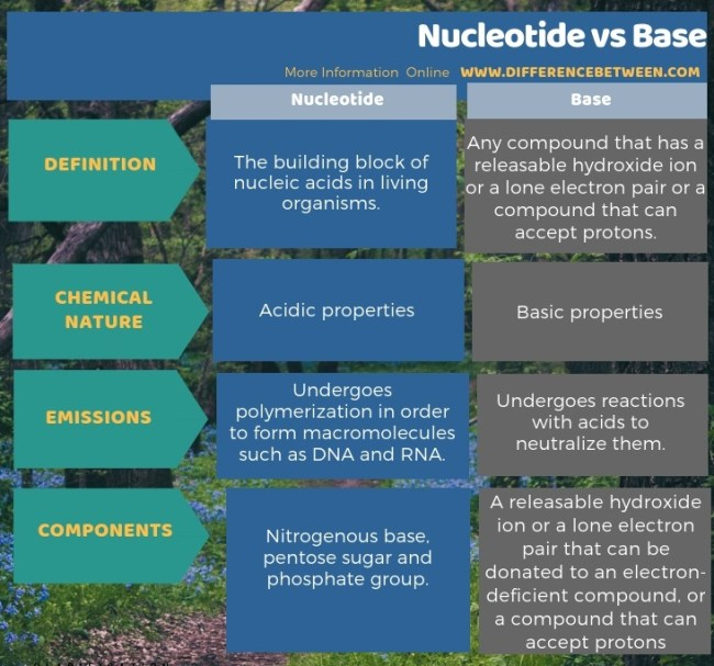 Difference Between Nucleotide and Base in Tabular Form