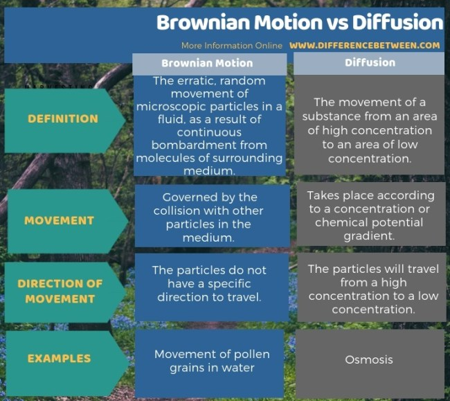Difference Between Brownian Motion and Diffusion in Tabular Form