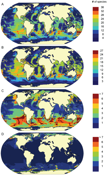 Difference Between Biodiversity and Species Richness