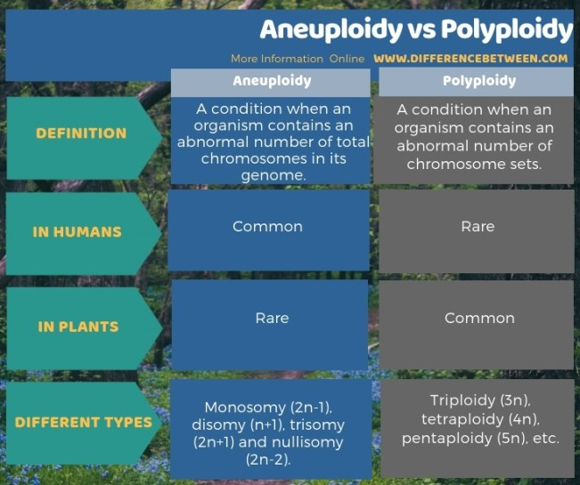 Difference Between Aneuploidy and Polyploidy in Tabular Form