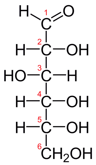 Difference Between Glucose and Galactose