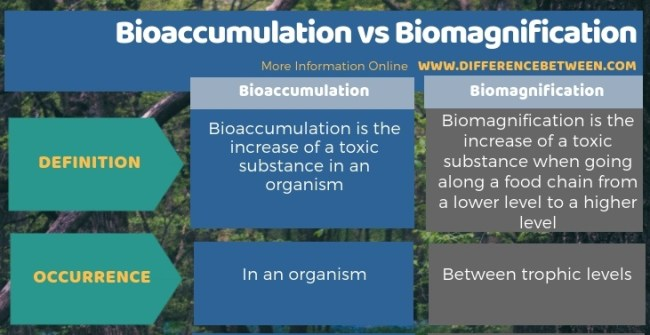 Difference Between Bioaccumulation and Biomagnification - Tabular Form
