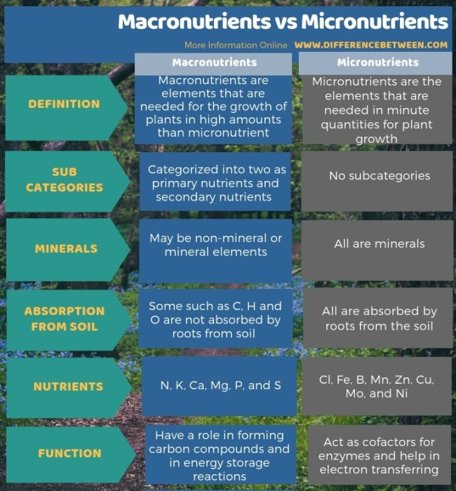 Difference Between Macronutrients and Micronutrients in Tabular Form