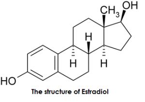 Estradiol vs Estriol | Difference Between