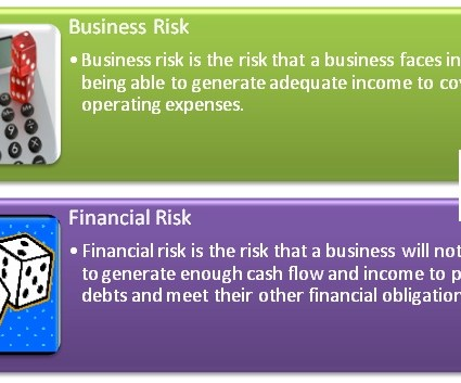 Difference Between Business Risk and Financial Risk