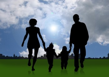 Difference Between Adoption and Adaptation