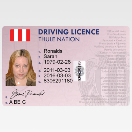 Difference Between Licence and License