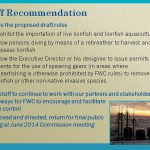 Difference Between Proposal and Recommendation