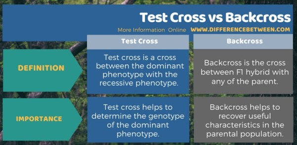 Difference Between Test Cross and Backcross in Tabular Form