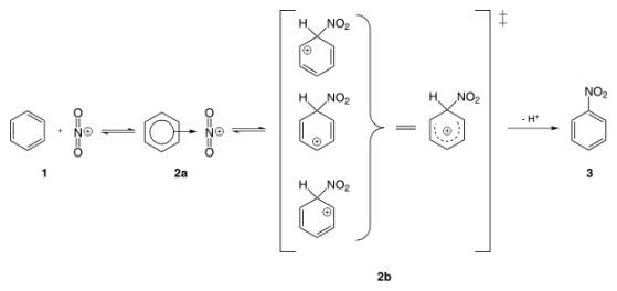 Difference Between Electrophilic and Nucleophilic Substitution - 3