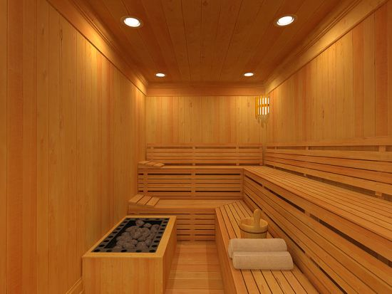 Difference Between Sauna and Spa