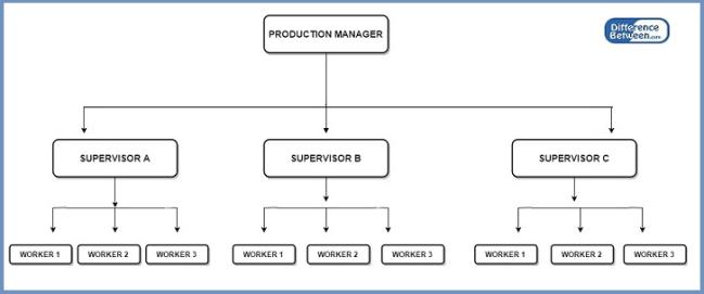 Key Difference - Line Organization vs Functional Organization