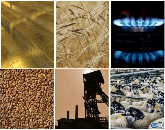 Key Difference - Commodity Exchange vs Stock Exchange -
