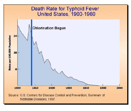 Key Difference Between Typhus and Typhoid