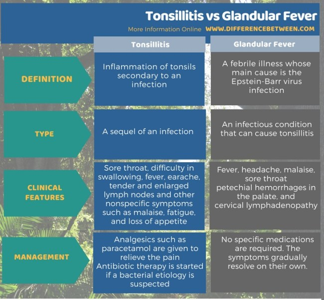 Difference Between Tonsillitis and Glandular Fever in Tabular Form