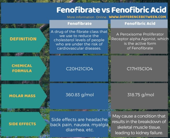 Difference Between Fenofibrate and Fenofibric Acid in Tabular Form