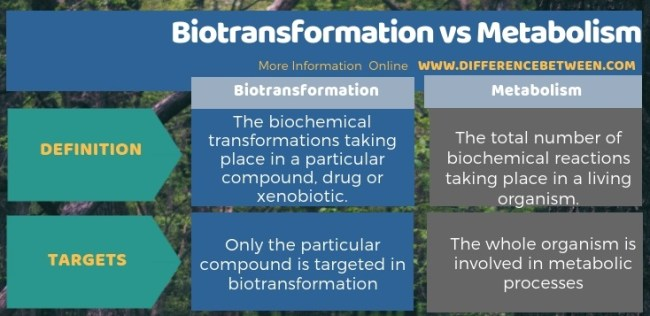 Difference Between Biotransformation and Metabolism in Tabular Form