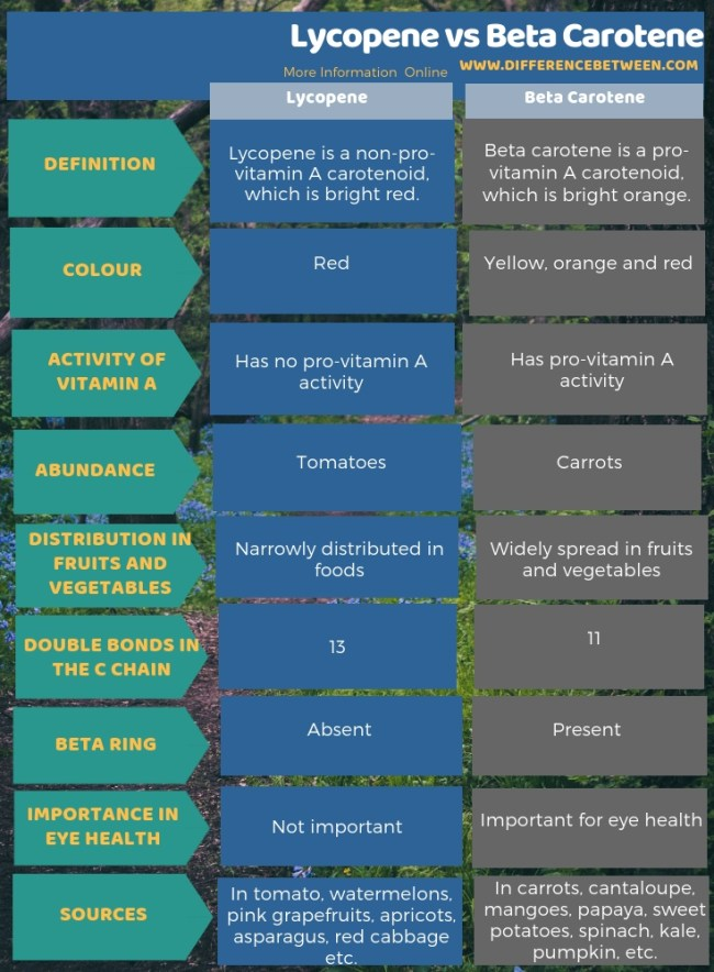 Difference Between Lycopene and Beta Carotene in Tabular Form