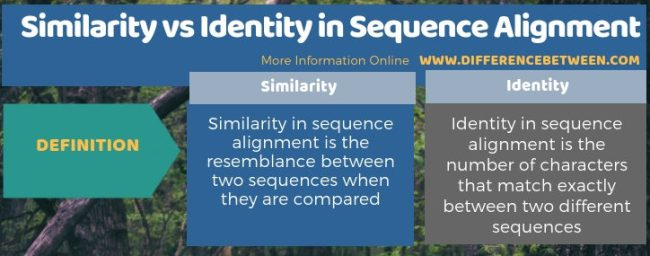 Difference Between Similarity and Identity in Sequence Alignment - Tabular Form