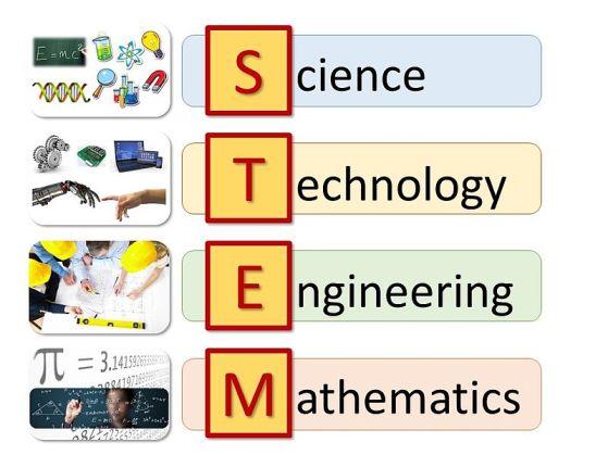 Key Difference - STEM vs STEAM
