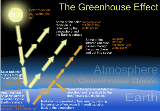 Difference Between Methane and Carbon Dioxide