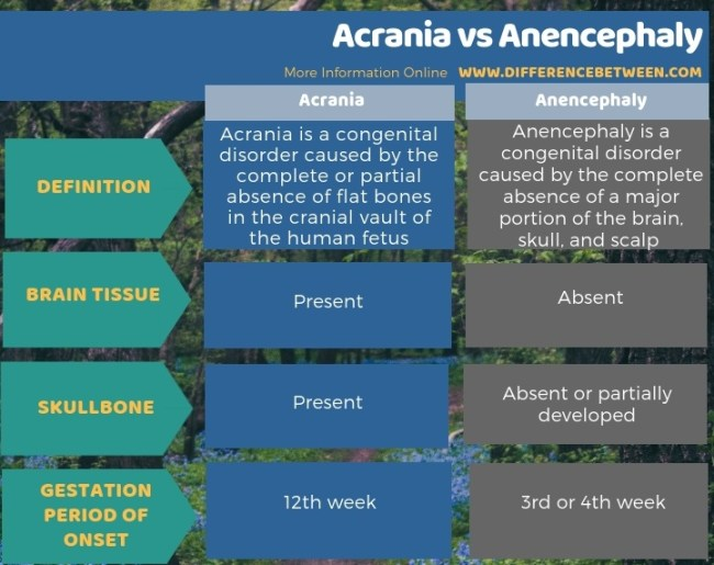 Difference Between Acrania and Anencephaly in Tabular Form