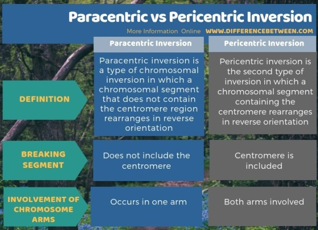 Difference Between Paracentric and Pericentric Inversion in Tabular Form