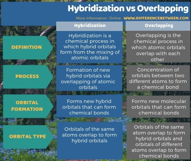 Difference Between Hybridization and Overlapping in Tabular Form