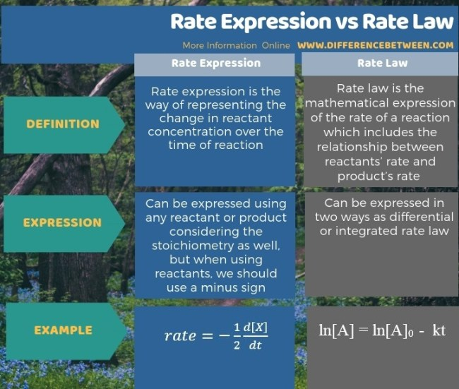 Difference Between Rate Expression and Rate Law in Tabular Form