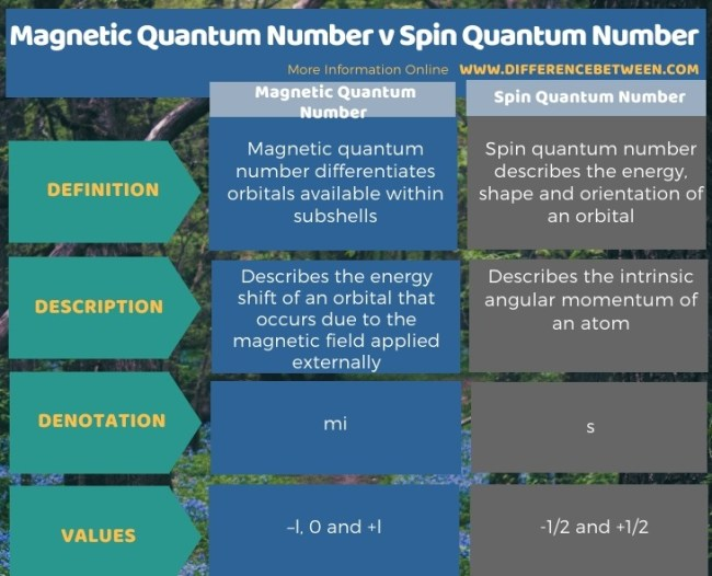 Difference Between Magnetic Quantum Number and Spin Quantum Number in Tabular Form