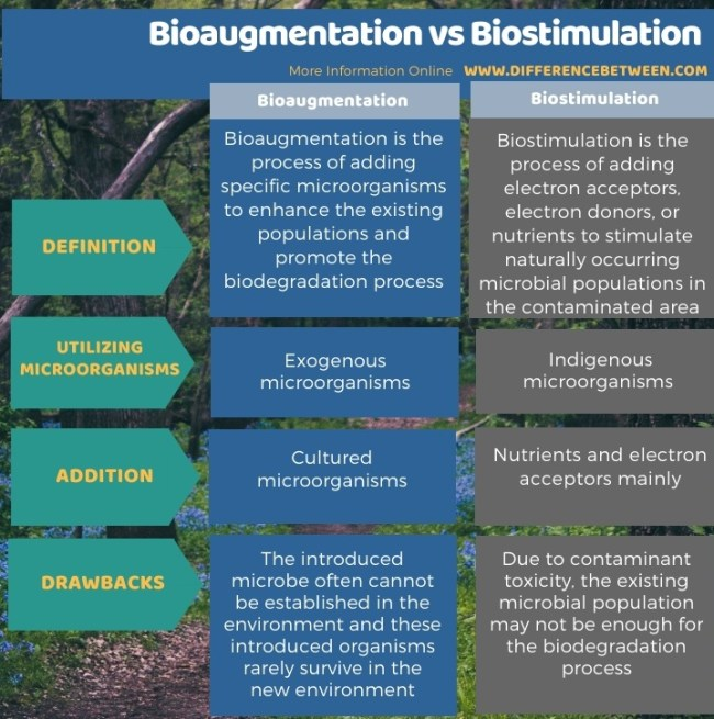 Difference Between Bioaugmentation and Biostimulation in Tabular Form
