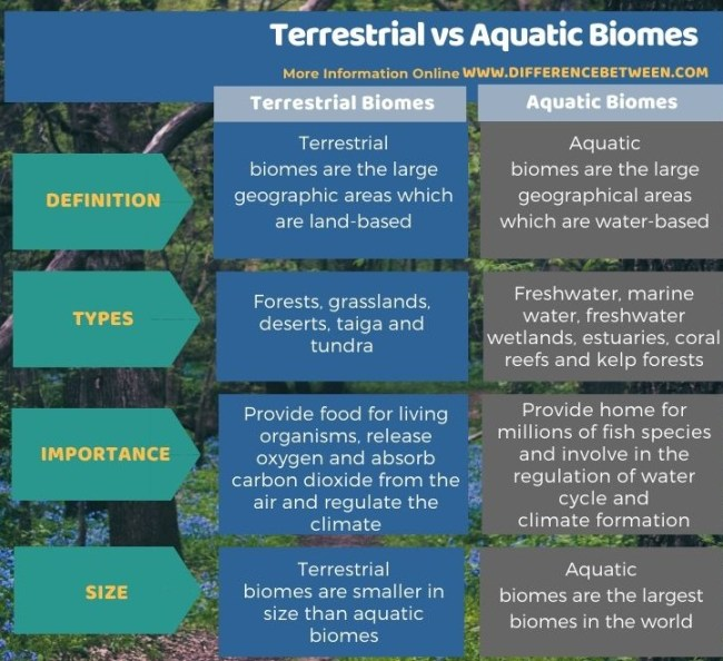 Difference Between Terrestrial and Aquatic Biomes in Tabular Form