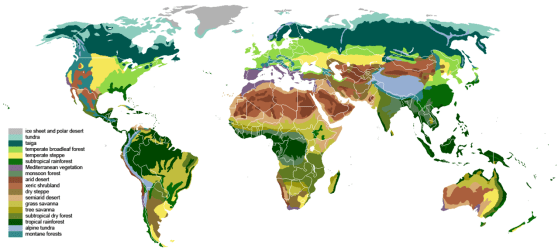 Difference Between Terrestrial and Aquatic Biomes