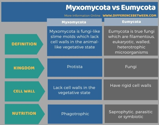 Difference Between Myxomycota and Eumycota in Tabular Form