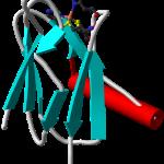 Difference Between Plastoquinone and Plastocyanin