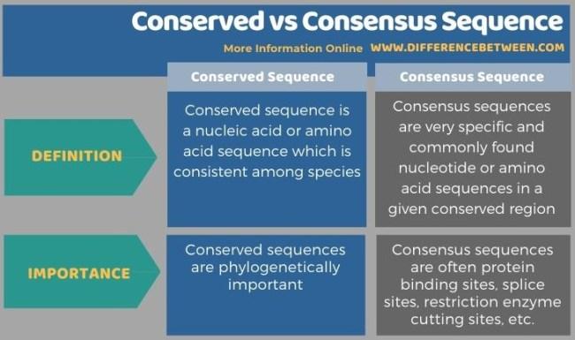Difference Between Conserved and Consensus Sequence in Tabular Form
