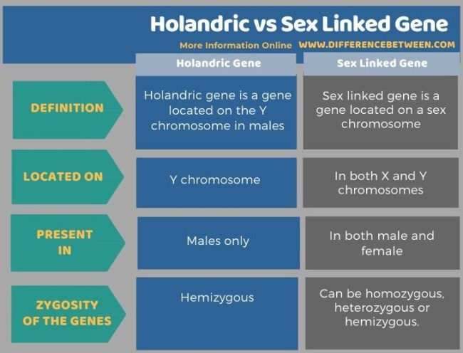 Difference Between Holandric and Sex Linked Gene in Tabular Form