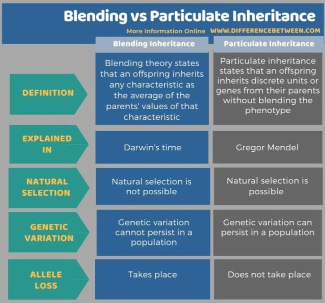 Difference Between Blending and Particulate Inheritance in Tabular Form