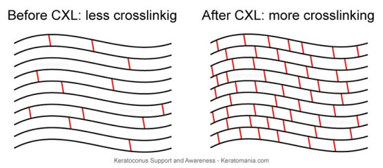 Difference Between Crosslinking and Gelation