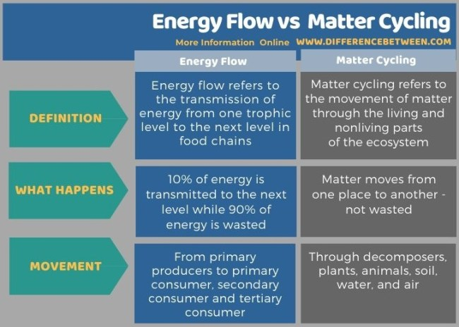 Difference Between Energy Flow and Matter Cycling in Tabular Form