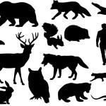 Difference Between Anthropocentrism Biocentrism and Ecocentrism