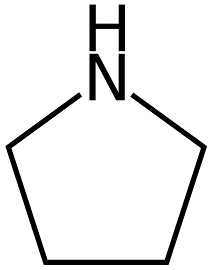 Difference Between Pyrrolidine and Piperidine