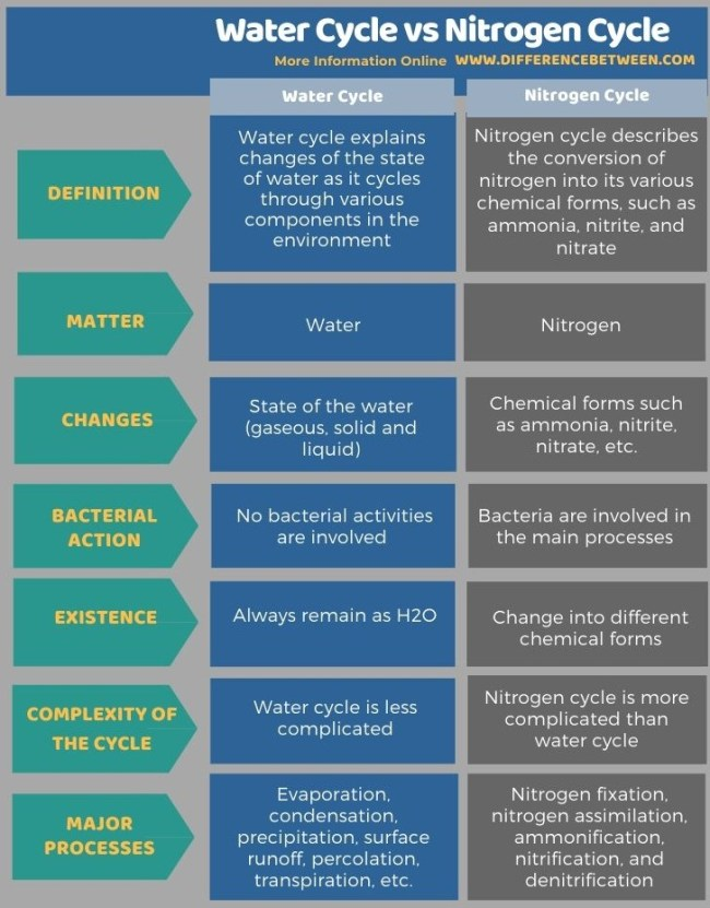 Difference Between Water Cycle and Nitrogen Cycle in Tabular Form