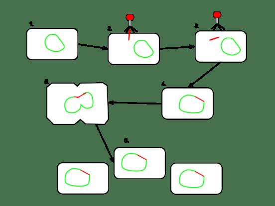 Key Difference - Virulent vs Temperate Phage