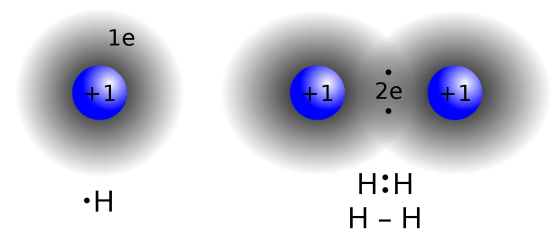 Difference Between Covalent and Noncovalent Bonds