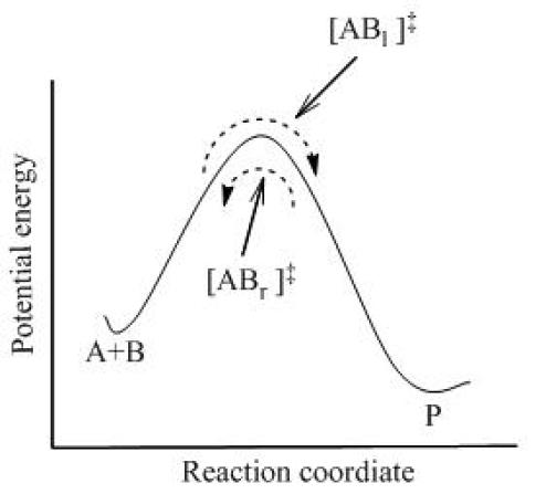 Key Difference - Activated Complex Theory vs Collision Theory