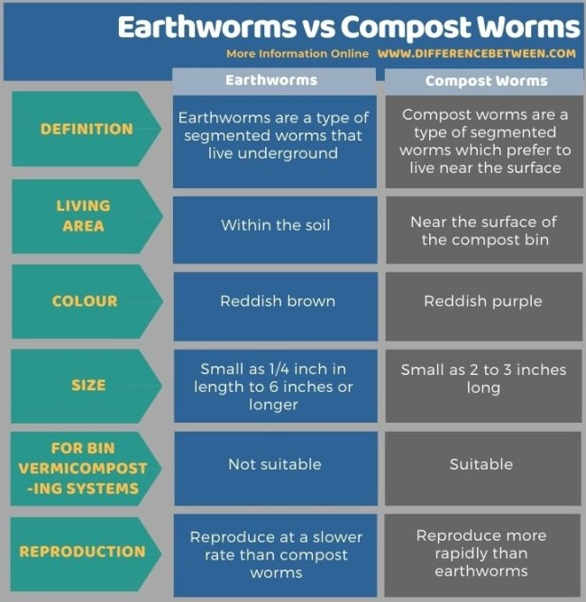 Difference Between Earthworms and Compost Worms in Tabular Form