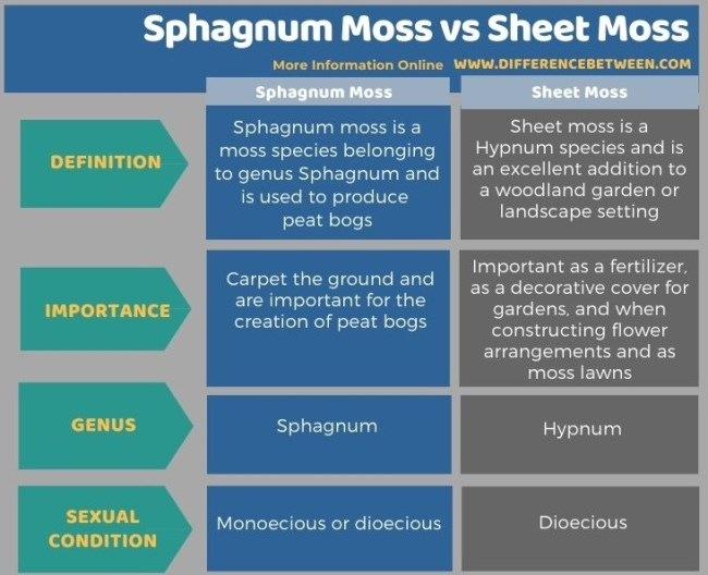 Difference Between Sphagnum Moss and Sheet Moss in Tabular Form